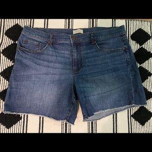 Loft Outlet Denim Shorts